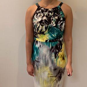Amazing Elie Tahari dress